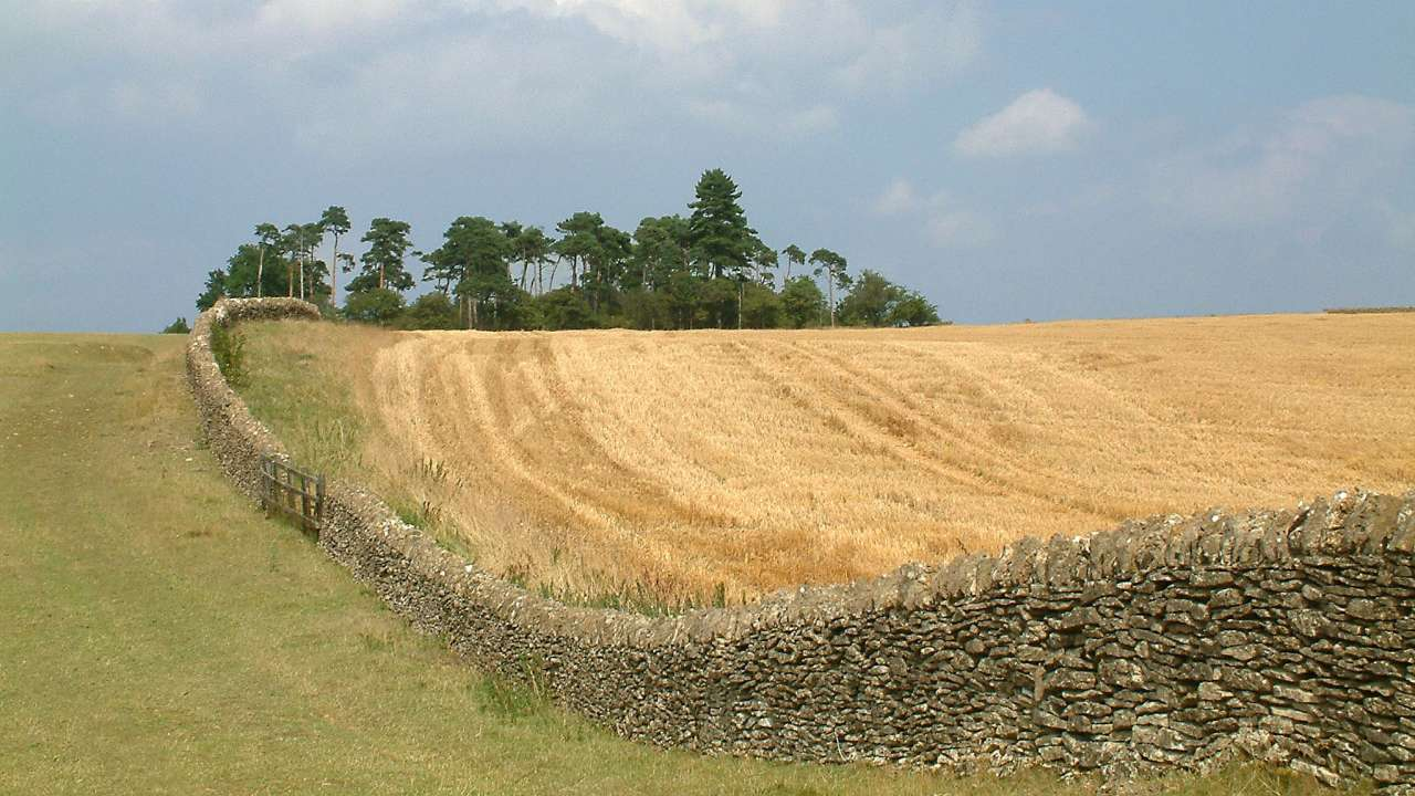Limestone_wall_on_Bredon_Hill_cropped